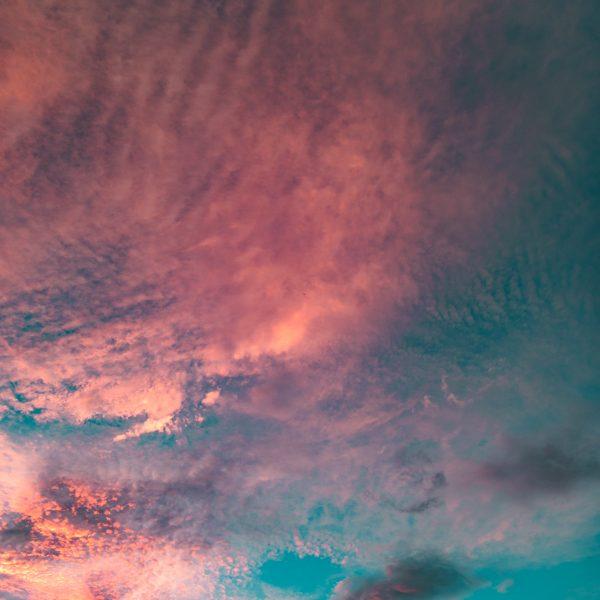Fire, Sky, Sunset, Longnecker